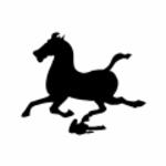 黑马骑士团